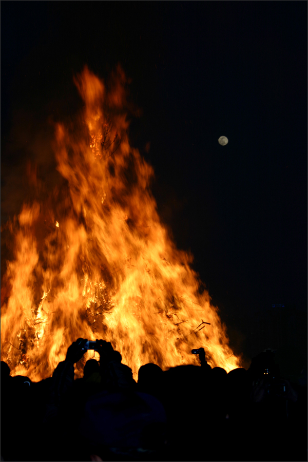겨울을 태우는 달집처럼 우리의 마음도 활활 타올랐으면...