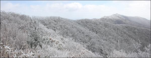 또아리봉에서 본 백운산(우측이 백운산 정상)