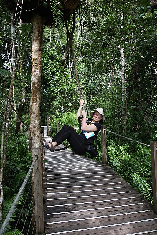 쿠란다를 뒤덮은 열대우림에서