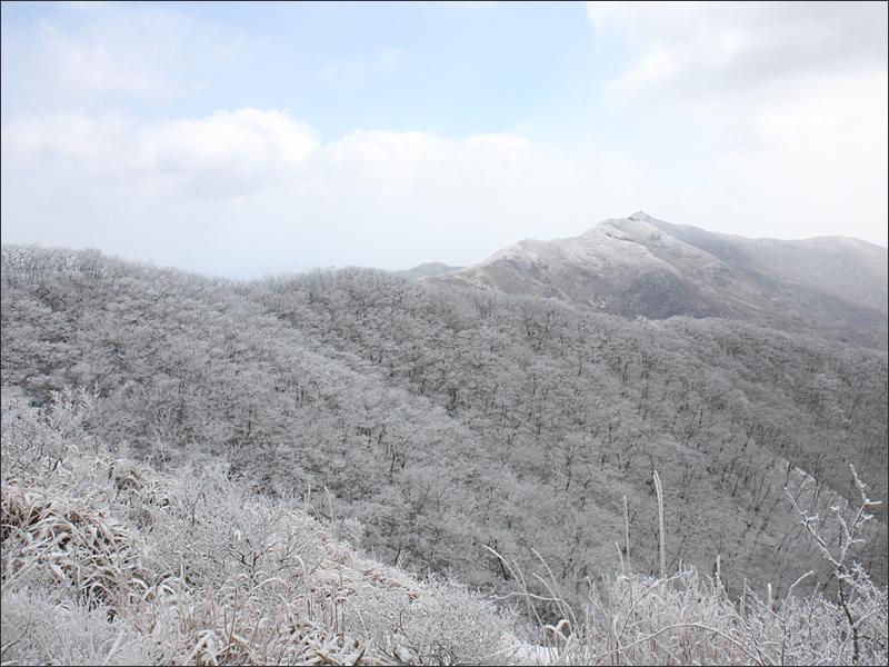 멀리 보이는 백운산 정상