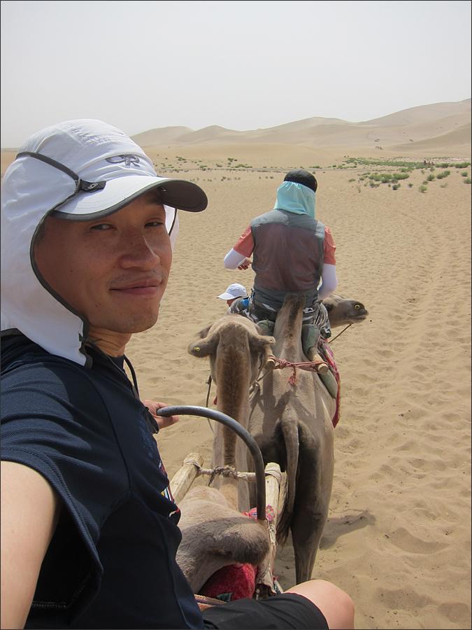 낙타에 오르다