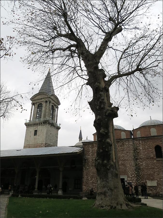 궁전과 하램의 경비할 수 있는 세워진 정의의 탑
